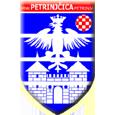 Logo futsal kluba MNK Petrinjčica Idis